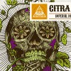 dogma-citra-lover